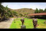 El Jardín Canario presenta su nuevo proyecto 2.0