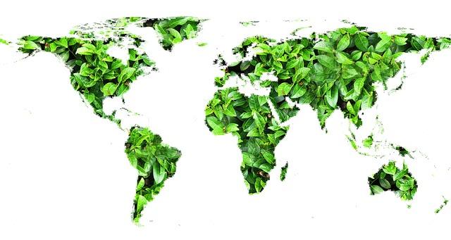 El mundo celebra el Día Mundial del Medio Ambiente con la actitud de EEUU hacia el cambio climático