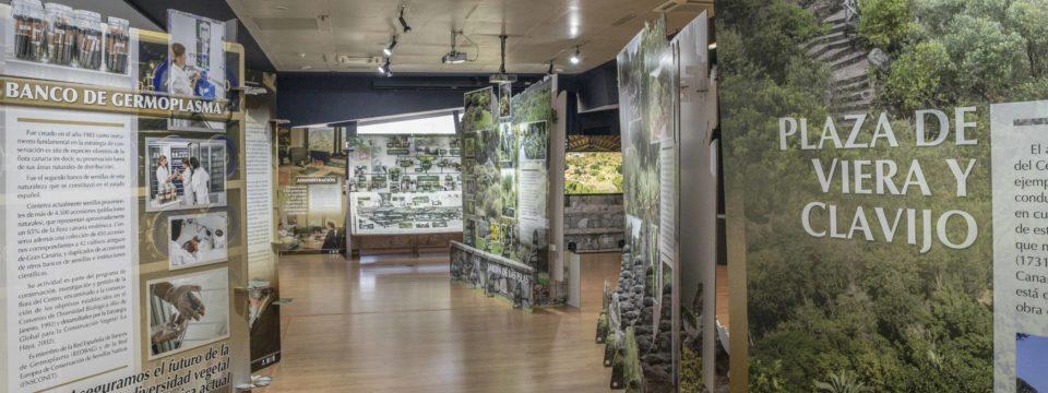 """La exposición """"Paseando al Jardín"""" continúa expuesta en el Museo Elder hasta final de este mes de enero"""