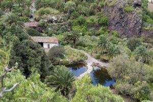 VISTA alpendre y charcas jardin canario luis azcona